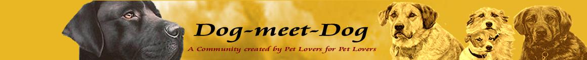 Dog-meet-Dog.de